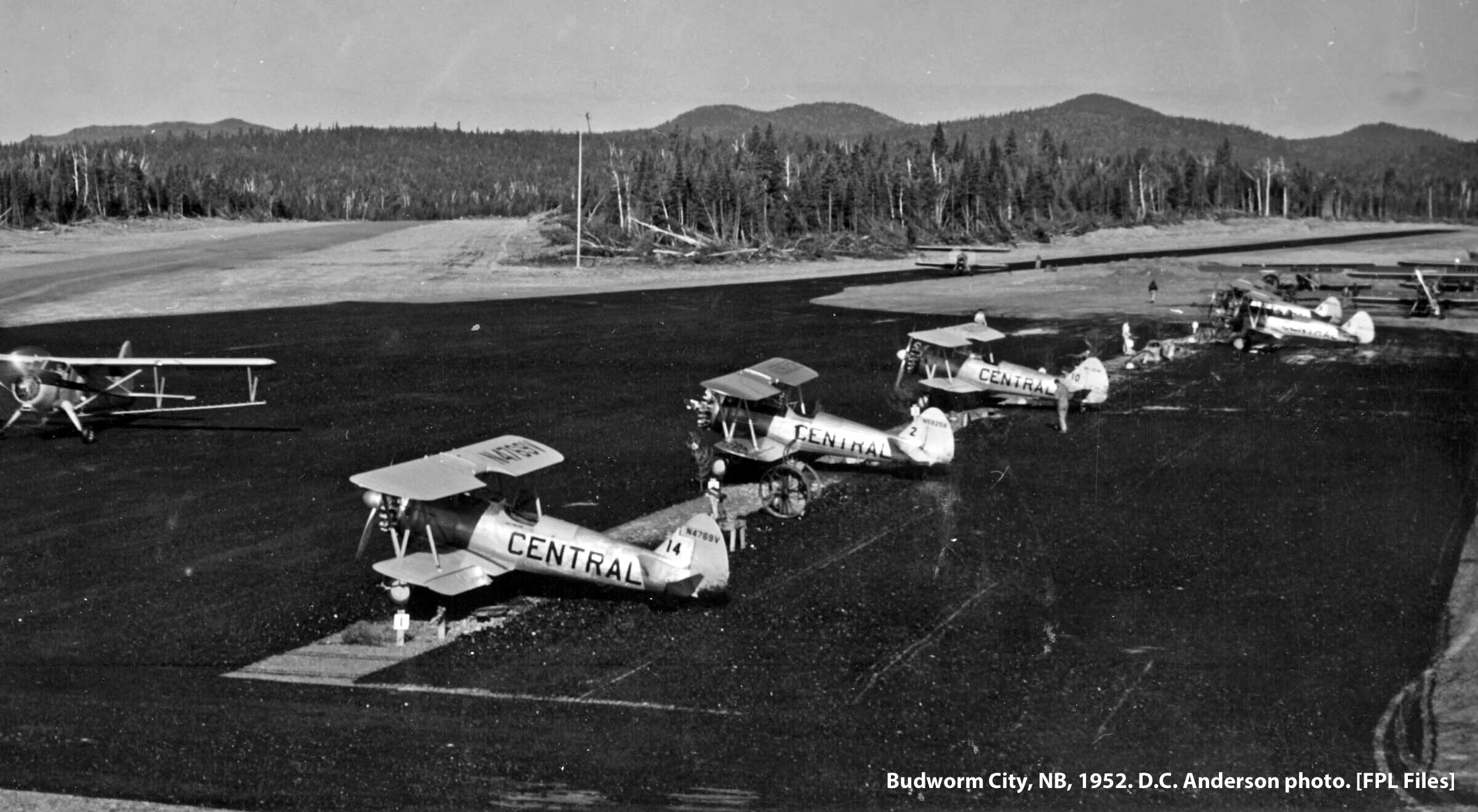 Stearmans at Budworm City, NB, 1952. D.C. Anderson photo.