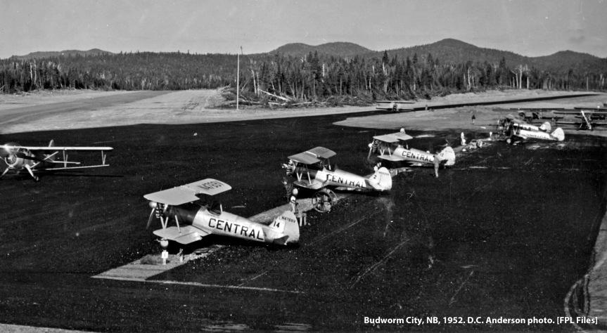 Stearmans at Budworm City, NB, 1952. D.C. Anderson photo.
