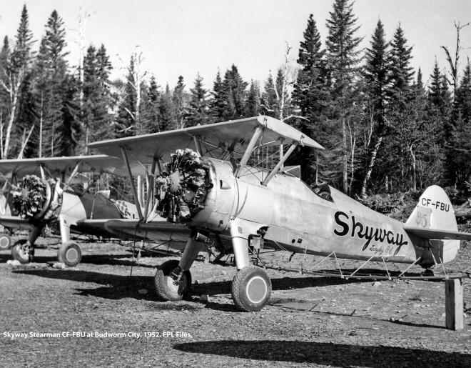 Skyway Stearmans parked
