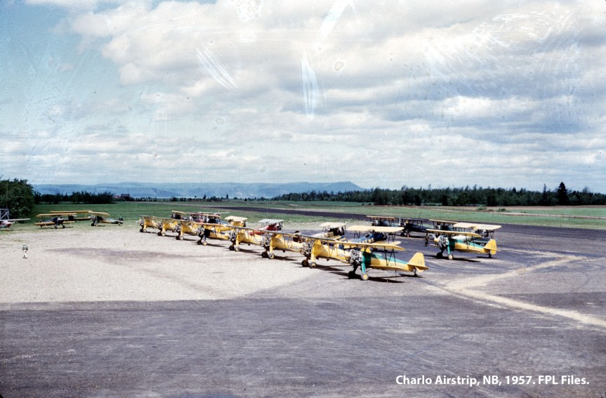 Stearmans parked at Charlo NB