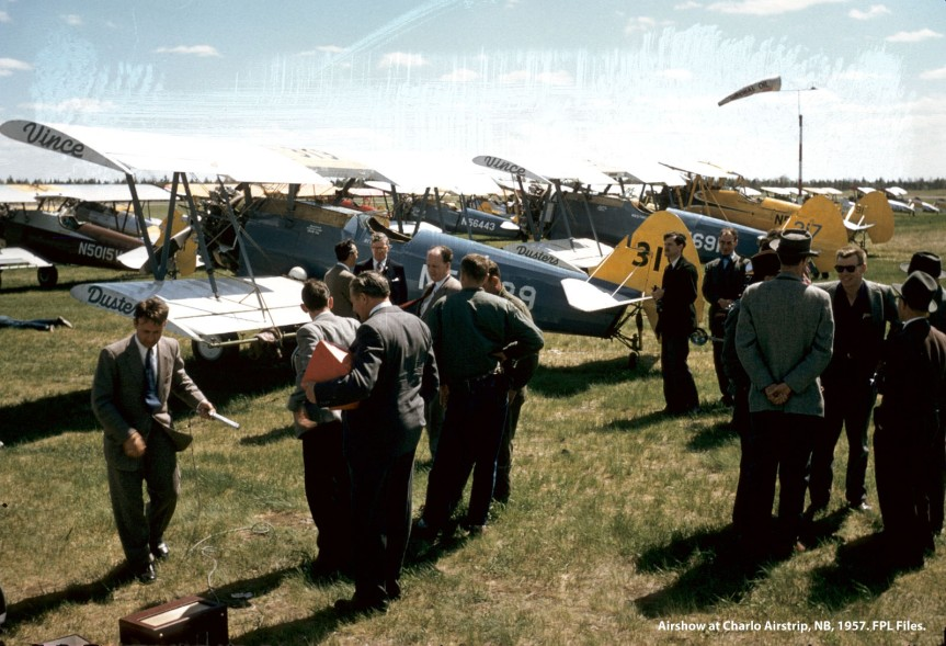 Stearmans at air show, Charlo NB, 1957