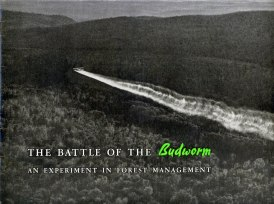 battle-of-the-budworm_1953-1