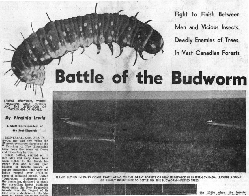 St Louis Post-Dispatch_16Aug1953-1