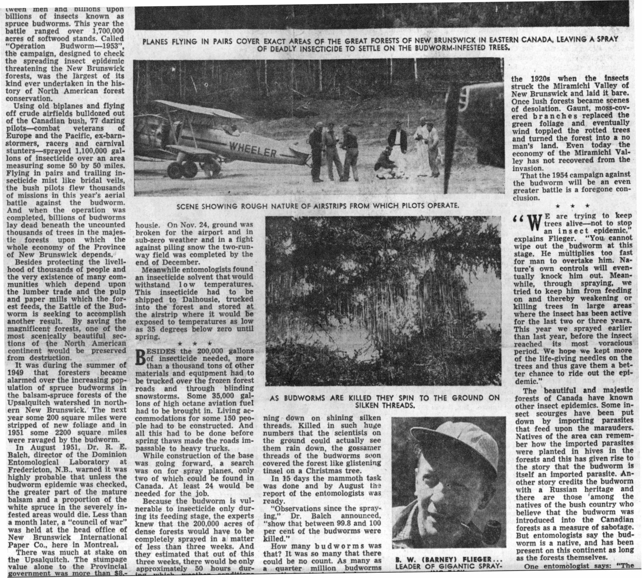 St Louis Post-Dispatch_16Aug1953-2
