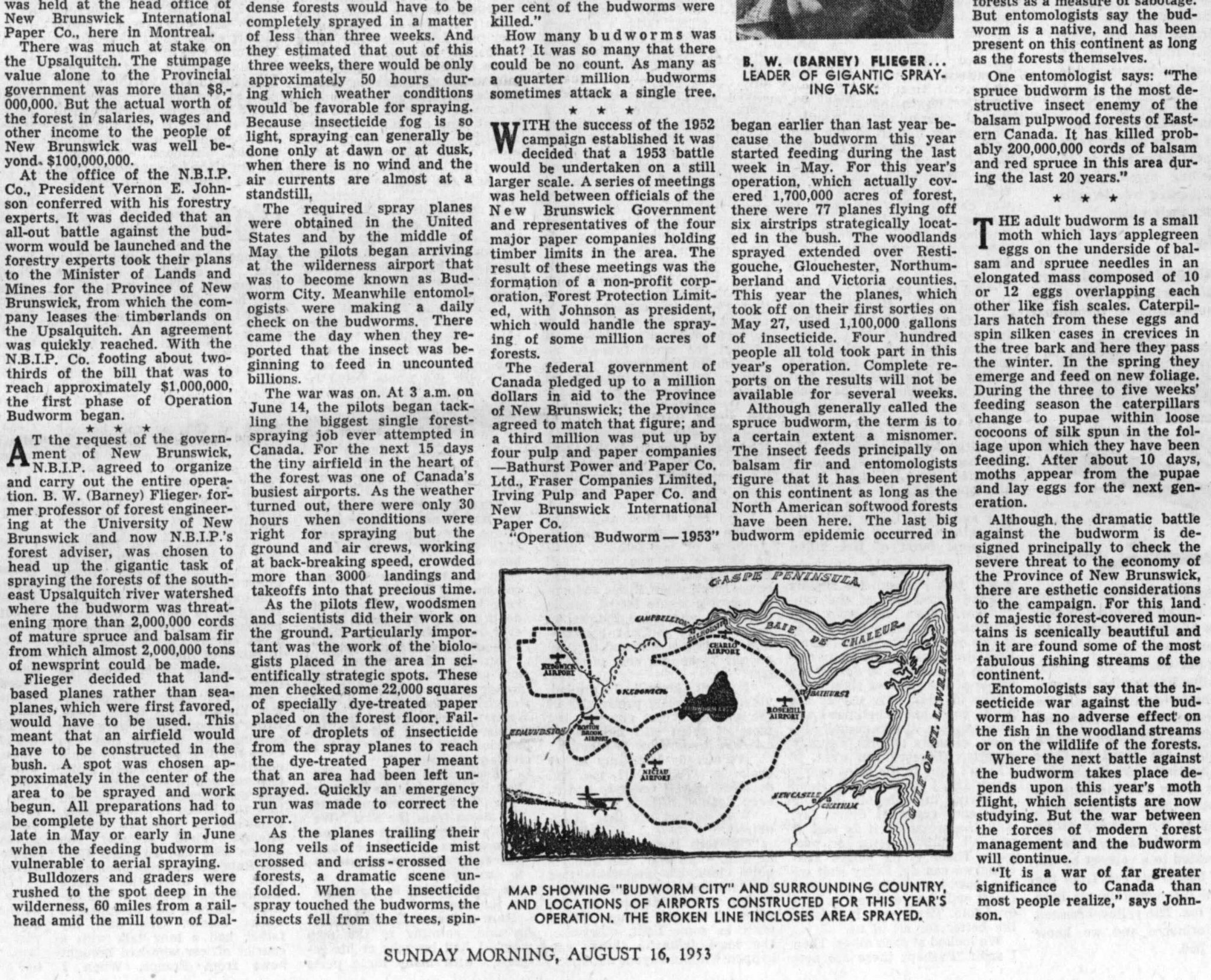 x-St Louis Post-Dispatch_16Aug1953-3