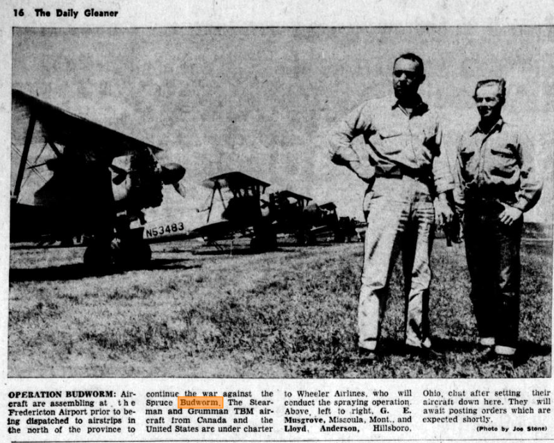 May 24, 1960, The Daily Gleaner (Fredericton) - The image identifies one Stearman: N53483, and two pilots: G.E. Musgrove of Missoula, Montana, and Lloyd Anderson of Hillsboro, Ohio.